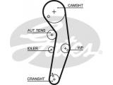 Ремень ГРМ  Ремень ГРМ AUDI/FORD/SEAT/SKODA/VW 1.9 00- (120x30)  Число зубцов: 120 Ширина (мм): 30